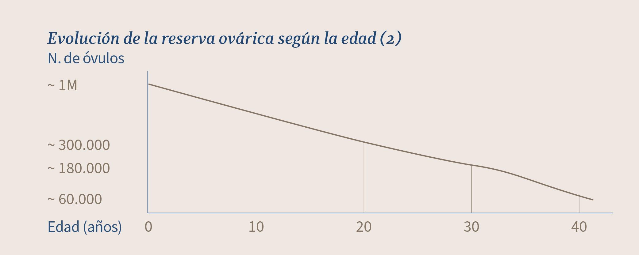 Evolución de la reserva ovárica según la edad